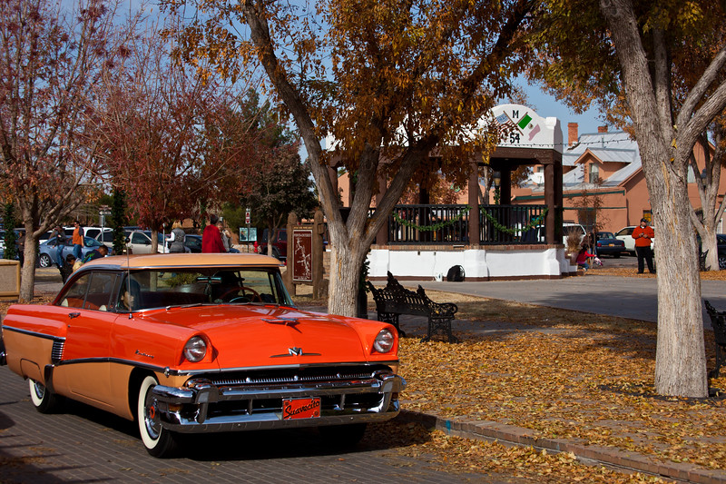 NM-2010-316: Mesilla, Dona Ana County, NM, USA