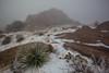 NM-2013-571: , Dona Ana County, NM, USA
