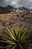 NM-2012-320: Dripping Springs, Dona Ana County, NM, USA