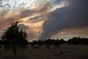 NM-2012-156: Alto, Lincoln County, NM, USA