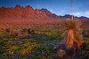 NM-2010-121: Organ Mountains, Dona Ana County, NM, USA