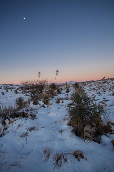 NM-2013-020: Bootheel, Hidalgo County, NM, USA
