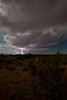 NM-2010-185: Santa Teresa, Dona Ana County, NM, USA