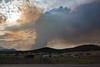 NM-2012-153: Alto, Lincoln County, NM, USA