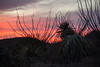 NM-2013-135: Organ Mountains, Dona Ana County, NM, USA