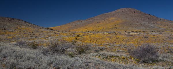 NM-2012-055: Steins, Hidalgo County, NM, USA