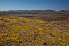NM-2012-046: Steins, Hidalgo County, NM, USA