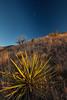 NM-2013-515: , Dona Ana County, NM, USA