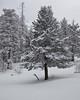 NM-2011-047: Benson Ridge, Otero County, NM, USA