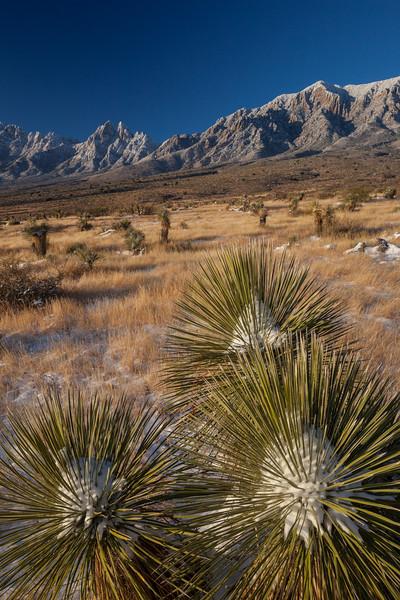NM-2013-541: , Dona Ana County, NM, USA