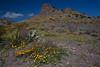 NM-2010-146: Florida Mountains, Luna County, NM, USA