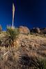 NM-2013-104: Soledad Canyon, Dona Ana County, NM, USA