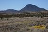 NM-2012-012: Steins, Hidalgo County, NM, USA