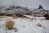 NM-2011-416: Soledad Canyon, Dona Ana County, NM, USA