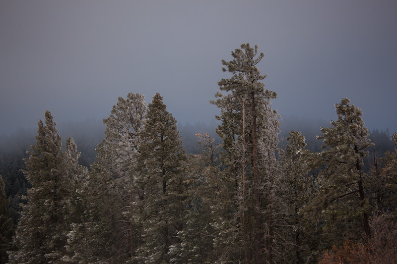 NM-2012-331: Lincoln National Forest, Otero County, NM, USA