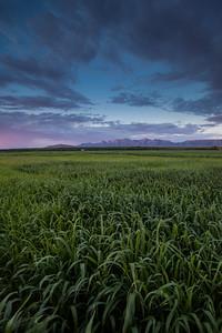 NM-2012-209: San Pablo, Dona Ana County, NM, USA