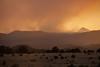 NM-2012-165: Alto, Lincoln County, NM, USA