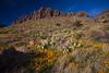 NM-2012-072: Rockhound State Park, Luna County, NM, USA