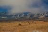 NM-2013-535: , Dona Ana County, NM, USA