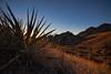 NM-2013-513: , Dona Ana County, NM, USA