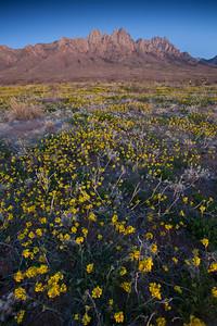 NM-2010-113: Organ Mountains, Dona Ana County, NM, USA