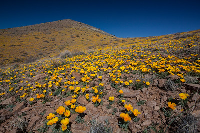 NM-2012-047: Steins, Hidalgo County, NM, USA