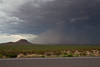 NM-2010-192: , Luna County, NM, USA