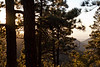 NM-2010-310: Cloudcroft, Otero County, NM, USA