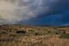 NM-2013-362: Silver City, Grant County, NM, USA