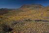 NM-2012-045: Steins, Hidalgo County, NM, USA