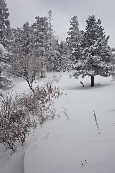 NM-2011-049: Benson Ridge, Otero County, NM, USA