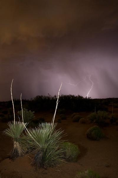 NM-2008-017: Santa Teresa, Dona Ana County, NM, USA