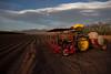 NM-2011-090: San Miguel, Dona Ana County, NM, USA
