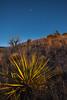 NM-2013-514: , Dona Ana County, NM, USA