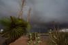 NM-2013-366: Santa Teresa, Dona Ana County, NM, USA