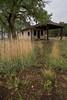 NM-2008-003: Glenrio, Quay County, NM, USA