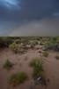 NM-2010-197: Santa Teresa, Dona Ana County, NM, USA