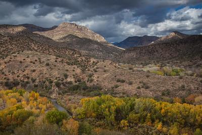 NM-2012-299: Gila River, Grant County, NM, USA
