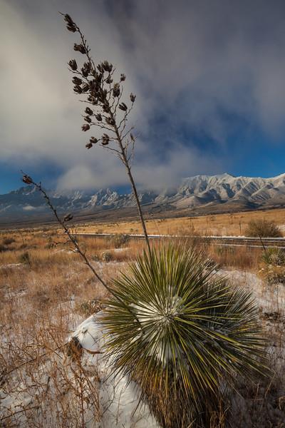 NM-2013-536: , Dona Ana County, NM, USA