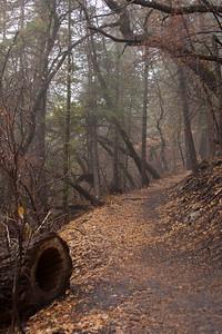 NM-2012-306: Cloudcroft, Otero County, NM, USA