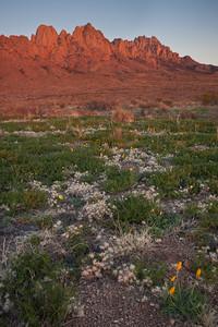NM-2010-111: Organ Mountains, Dona Ana County, NM, USA