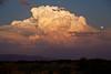 NM-2010-174: Santa Teresa, Dona Ana County, NM, USA