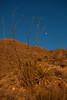 NM-2013-276: Dog Canyon, Otero County, NM, USA