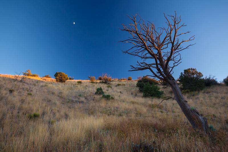 NM-2013-517: , Dona Ana County, NM, USA
