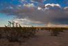 NM-2010-105: Mount Riley, Dona Ana County, NM, USA