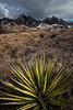 NM-2012-319: Dripping Springs, Dona Ana County, NM, USA