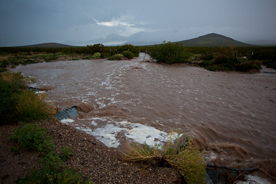 NM-2010-247: Columbus, Luna County, NM, USA