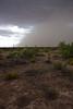NM-2010-195: Santa Teresa, Dona Ana County, NM, USA