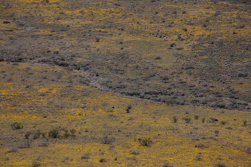 NM-2012-044: Steins, Hidalgo County, NM, USA