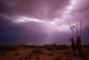 NM-2013-343: Las Cruces, Dona Ana County, NM, USA
